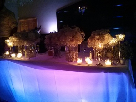 uplight, uplights, uplighting, up light, up lighting, up lights, portland, Gray Gables, Grey Gables, Estate, ballroom,  outdoor wedding, lighting, lights, light, event lighting, portland, color wash, under table, undertable, under-table, pin spot, wedding cake, Milwaukie